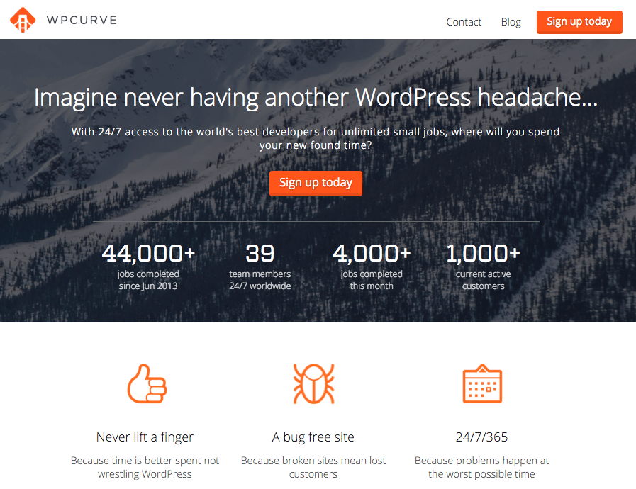 free wordpress small business website security scan
